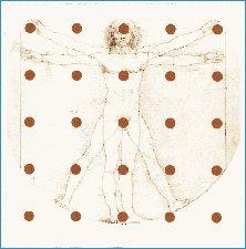 Mondrago, Leonardo da Vinci, Pythagoras und Vitruw